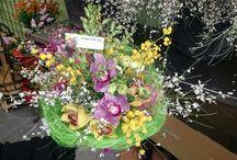 flors amparo