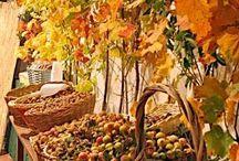 Seasons / Природа, времена года
