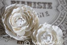 Plaster of Paris Projects
