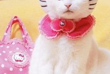 Hello Kitty!!!! / by Vic N Vickie Meaders-Buquoi