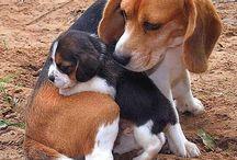 maman et petit