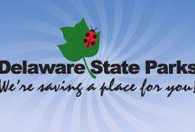 All things Delaware!