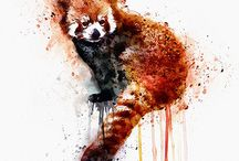 red panda tattoo
