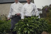 When Marriott Hotels met River Cottage