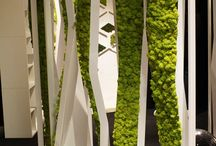 studio apartment for botany inspiration