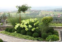 ogród znin