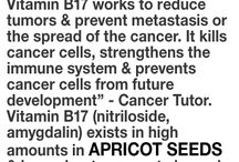 Cancer Fighting B 17