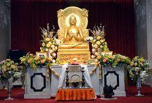 Circuit en Inde : Sarnath