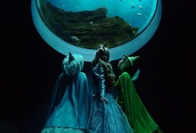 fairytales, fairies and everything in between / by Caitlin