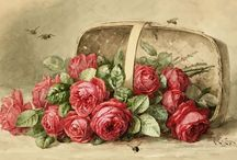 Kvety - obrázky