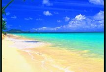 Tropical beaches / This is about colourful things and beaches and tropical stuff