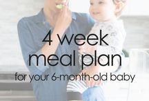 Transitioning Your Baby to Solids / The best tips and tricks for starting solid foods with your baby. Great resources for feeding your 6 month old purées and finger foods. Ideas for baby led weaning, purees and combination feeding.