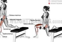 Workout - leg