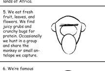 Ape Ambassadors