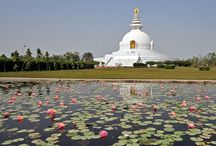 Buddha Pilgrimage / Get information about Buddha Tourism in India - Buddha pilgrimage places, temples, historical monuments, museums, history and much more.  / by Devraaj Negi