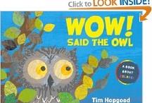 Wow Said the Owl - Math
