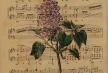 music / musikk