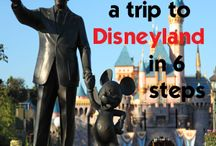 Disney Honeymoon - Disneyland Specific / 10 Days at Walt Disney World Then a 14 night Disney Cruise through the Panama Canal and up to California for 5 Days at Disney Land. It was getting to crazy had to split my hundreds of pins into groups.