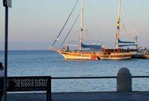 #Kos #Greece #Marina Kos #Kosharbour / Nature