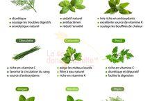 aromates epices herbes et sante