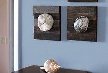 decors with shells
