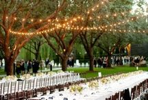 Wedding Stuff / by Jennifer Brackenridge