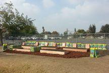 Horace Mann Elementary (Bakersfield) - 2014 School Garden Contest