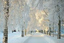 Snow+white / Snow+white