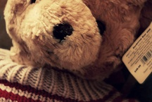 TEDDY BEAR ... lover ♥