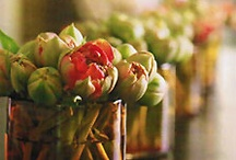 Spring flowers / An inspiring look at flowers available in the Spring-time, ideal for Brides looking for the perfect flowers.