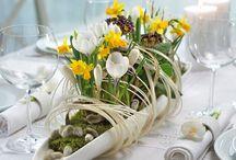 jaro - floristika