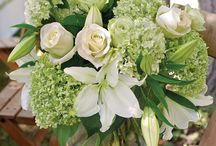Wedding Flowers / by Alex Seely
