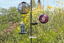 Bird Feeders and Stands