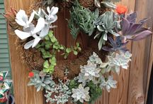 Fall Beauty at Winterberry / Fall wreaths, plants, container gardens, flowers and more!
