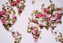 Rose My World