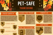 Thanksgiving Safety