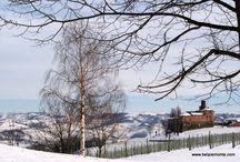 Piemonte (Italy) - landscape, gardens, views / Landscape of Piedmont, Mediterranean gardens, Alps...