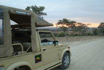 TravelMoodz - Tanzania / Tanzania
