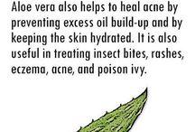 Aloe veera benifits