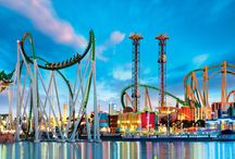 Florida Family Vacations / Family vacation ideas in Florida.  Fun family activities and kid-friendly resorts and hotels.