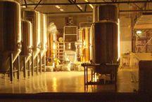 Beer Brewing Information
