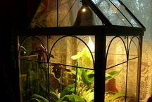 Gardens in glass
