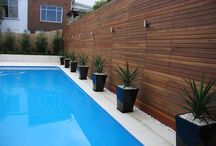 pool landscaping / design