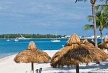 Key West, baby.... / by Mollie Gulino