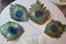 PEACOCK TAIL FEATHERS