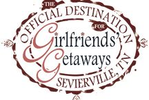 Visit Sevierville / Lots of fun things to do and explore in Sevierville, TN.