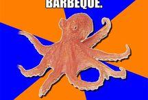 Online diagnosis octopus