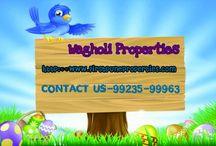 Wagholi Properties
