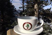 Coffee Tree Organic Coffee (Edmond Oklahoma) / Organic Coffee Shop
