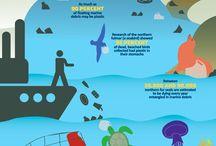 인포그래픽 (Infographic)